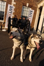 Walking with the Wounded with their huskies